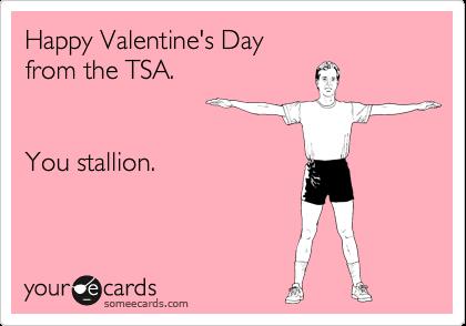 Happy Valentine's Day from the TSA.    You stallion.