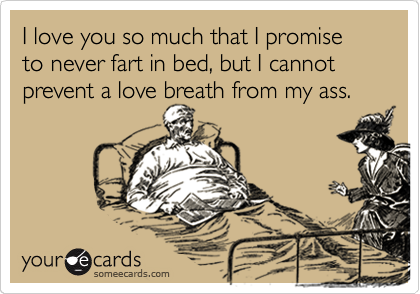 I love you so much that I promise to never fart in bed, but I cannot prevent a love breath from my ass.