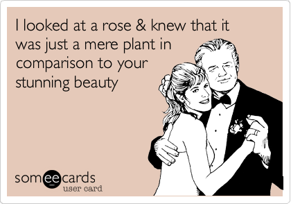 I looked at a rose & knew that it was just a mere plant in comparison to your stunning beauty