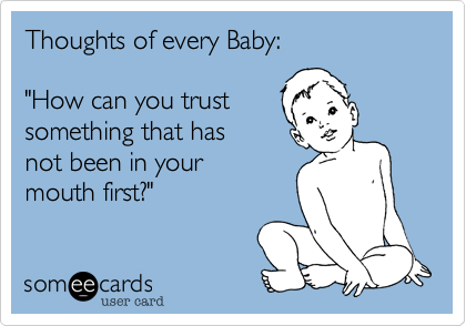 """Thoughts of every Baby:  """"How can you trust  something that has  not been in your mouth first?"""""""