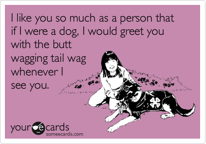 I like you so much as a person that if I were a dog, I would greet you with the butt wagging tail wag whenever I see you.