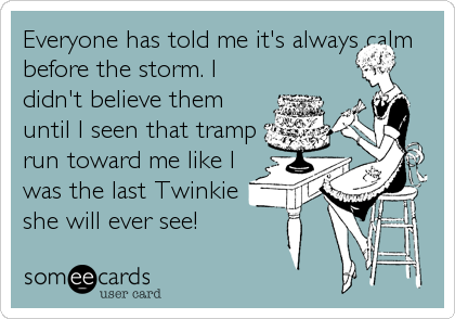 Everyone has told me it's always calm before the storm. I didn't believe them until I seen that tramp run toward me like I was the last Twinkie she will ever see!