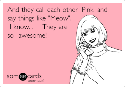 """And they call each other 'Pink' and say things like """"Meow"""".    I know...    They are so  awesome!"""