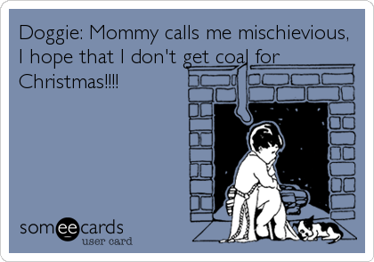Doggie: Mommy calls me mischievious, I hope that I don't get coal for Christmas!!!!