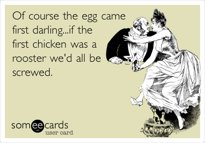 Of course the egg came first darling...if the first chicken was a rooster we'd all be screwed.