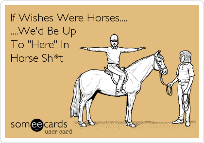 "If Wishes Were Horses.... ....We'd Be Up To ""Here"" In Horse Sh*t"