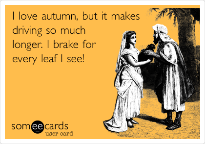 I love autumn, but it makes driving so much longer. I brake for every leaf I see!
