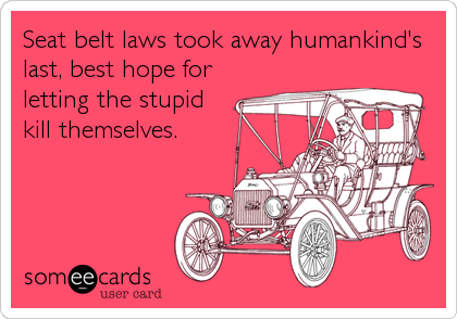 Seat belt laws took away humankind's last, best hope for letting the stupid kill themselves.
