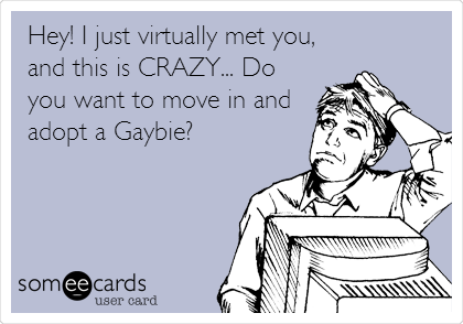 Hey! I just virtually met you, and this is CRAZY... Do you want to move in and adopt a Gaybie?