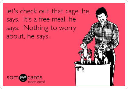 let's check out that cage, he says.  It's a free meal, he says.  Nothing to worry about, he says.
