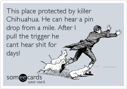 This place protected by killer Chihuahua. He can hear a pin drop from a mile. After I pull the trigger he cant hear shit for days!