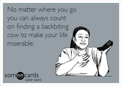 No matter where you go you can always count on finding a backbiting cow to make your life miserable.