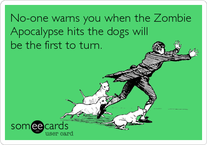 No-one warns you when the Zombie Apocalypse hits the dogs will be the first to turn.