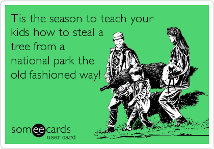 Tis the season to teach your kids how to steal a tree from a national park the old fashioned way!