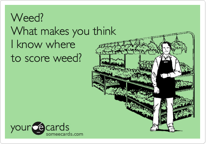 Weed? What makes you think I know where to score weed?