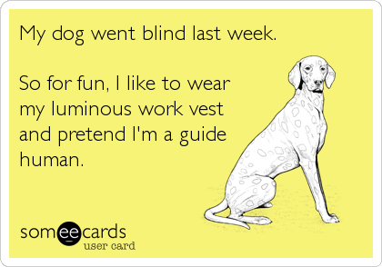My dog went blind last week.  So for fun, I like to wear my luminous work vest and pretend I'm a guide human.
