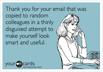 Thank you for your email that was copied to random colleagues in a thinly disguised attempt to make yourself look smart and useful.