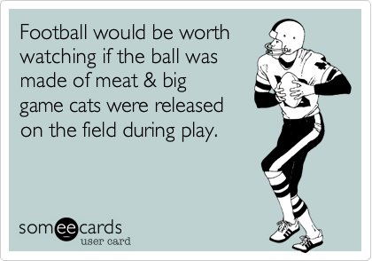Football would be worth watching if the ball was made of meat %26 big game cats were released on the field during play.