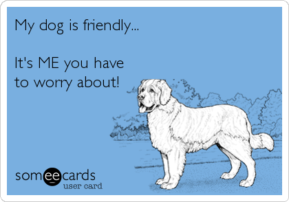 My dog is friendly...  It's ME you have to worry about!