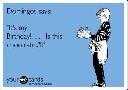"Domingos says:      ""It's my Birthday!  . . . Is this chocolate..?!?"""