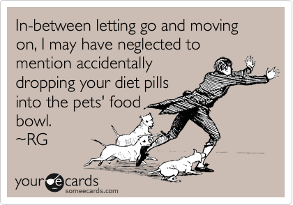 In-between letting go and moving on, I may have neglected to mention accidentally dropping your diet pills into the pets' food bowl.  ~RG