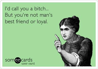 I'd call you a bitch...  But you're not man's best friend or loyal.