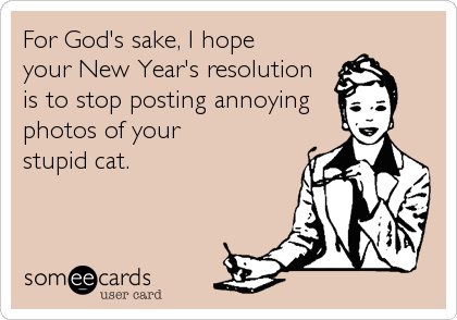 For God's sake, I hope    your New Year's resolution  is to stop posting annoying   photos of your  stupid cat.