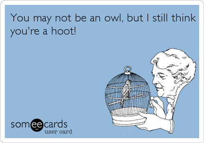 You may not be an owl, but I still think you're a hoot!