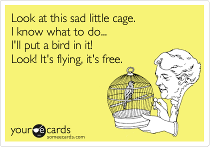 Look at this sad little cage.  I know what to do... I'll put a bird in it!  Look! It's flying, it's free.