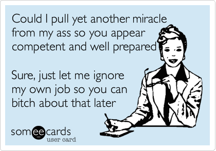 Could I pull yet another miracle from my ass so you appear competent and well prepared 