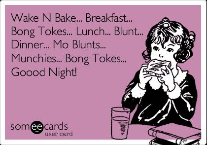 Wake N Bake... Breakfast... Bong Tokes... Lunch... Blunt... Dinner... Mo Blunts... Munchies... Bong Tokes... Goood Night!
