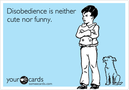 Disobedience is neither cute nor funny.