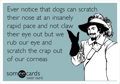 Ever notice that dogs can scratch their nose at an insanely rapid pace and not claw their eye out but we rub our eye and scratch the crap out of our corneas