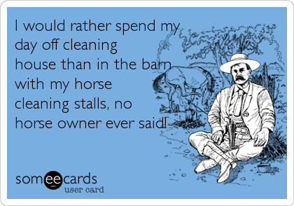 I would rather spend my day off cleaning house than in the barn with my horse cleaning stalls, no horse owner ever said!