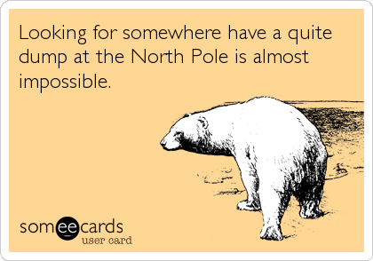 Looking for somewhere have a quite dump at the North Pole is almost impossible.