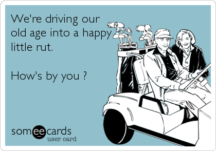 We're driving our old age into a happy little rut.   How's by you ?