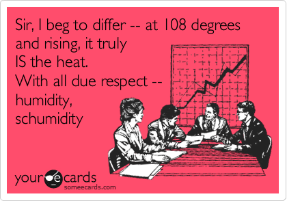 Sir, I beg to differ -- at 108 degrees  and rising, it truly  IS the heat.  With all due respect -- humidity, schumidity