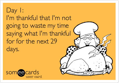 Day 1%3A I'm thankful that I'm not going to waste my time saying what I'm thankful for for the next 29 days.