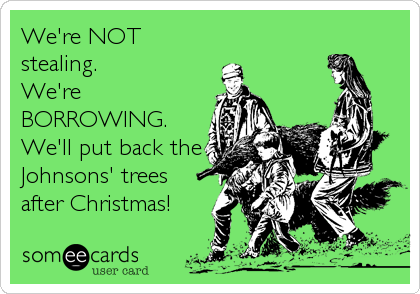 We're NOT stealing.  We're BORROWING. We'll put back the Johnsons' trees after Christmas!