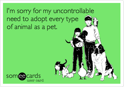 I'm sorry for my uncontrollable need to adopt every type of animal as a pet.