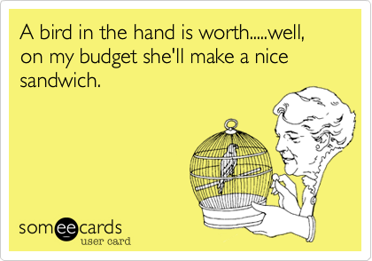 A bird in the hand is worth.....well%2C on my budget she'll make a nice sandwich.