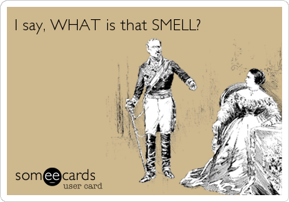 I say, WHAT is that SMELL?