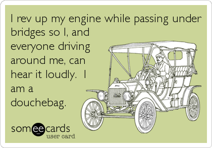 I rev up my engine while passing under bridges so I, and everyone driving around me, can hear it loudly.  I am a douchebag.