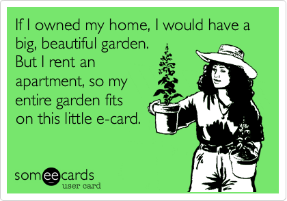 If I owned my home%2C I would have a big%2C beautiful garden.