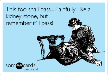 This to shall pass... Painfully, like a kidney stone, but remember it'll pass!