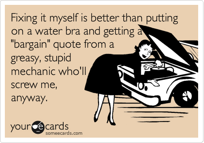 """Fixing it myself is better than putting on a water bra and getting a """"bargain"""" quote from a greasy, stupid mechanic who'll screw me, anyway."""