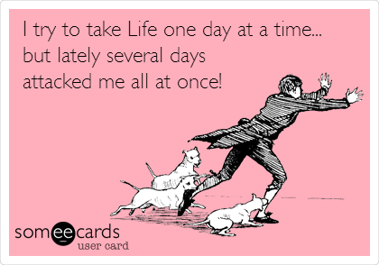 I try to take Life one day at a time... but lately several days attacked me all at once!