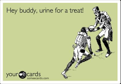 Hey buddy, urine for a treat!