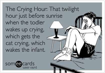 The Crying Hour%3A That twilight hour just before sunrise when the todler wakes up crying%2C which gets the cat crying%2C which wakes the infant.