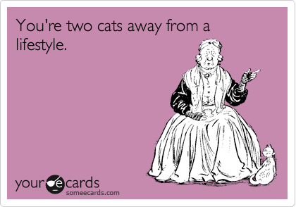 You're two cats away from a lifestyle.